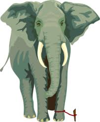 This image has an empty alt attribute; its file name is Elephant-1.jpg